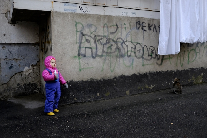 Child spray bottle graffiti cat laundry