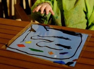 Sunprint Transparency Sun Prints Sun Art Sunprint Kit Chalk Markers