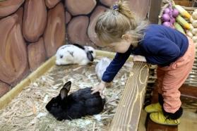Petting a bunny at the petting zoo in Tbilisi, Georgia