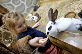 Feeding a bunny at the petting zoo in Tbilisi, Georgia